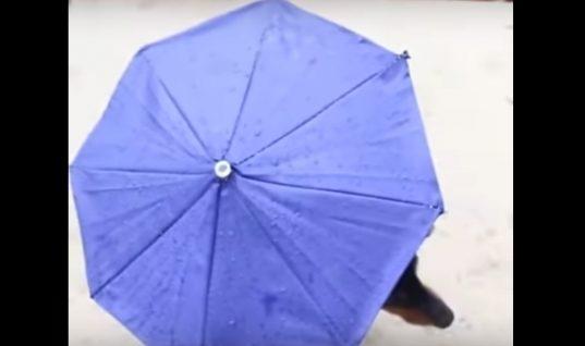 Θα λιώσετε! Η απίστευτη πατέντα για να βγάζεις τον σκύλο στη βροχή και να μην βρέχεται! (ΒΙΝΤΕΟ)