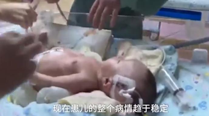 Απίστευτο! Σκύλος έσωσε νεογέννητο που είχε θαφτεί ζωντανό σε χωράφι