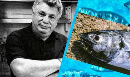 Ποια ψάρια να μην τρώμε μετά ρύπανση στον Σαρωνικό, συμβουλεύει ο Λ. Λαζάρου